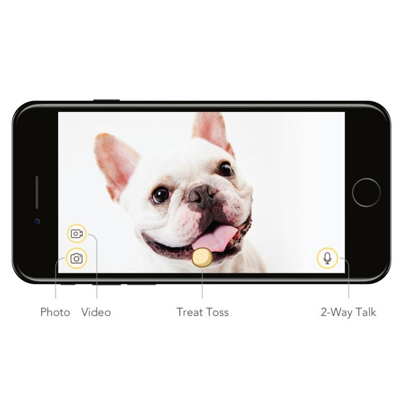 Livestream UI